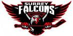 Surrey Falcons
